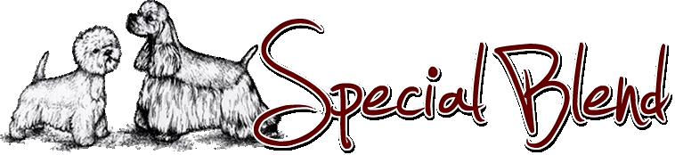 Logo Special Blend